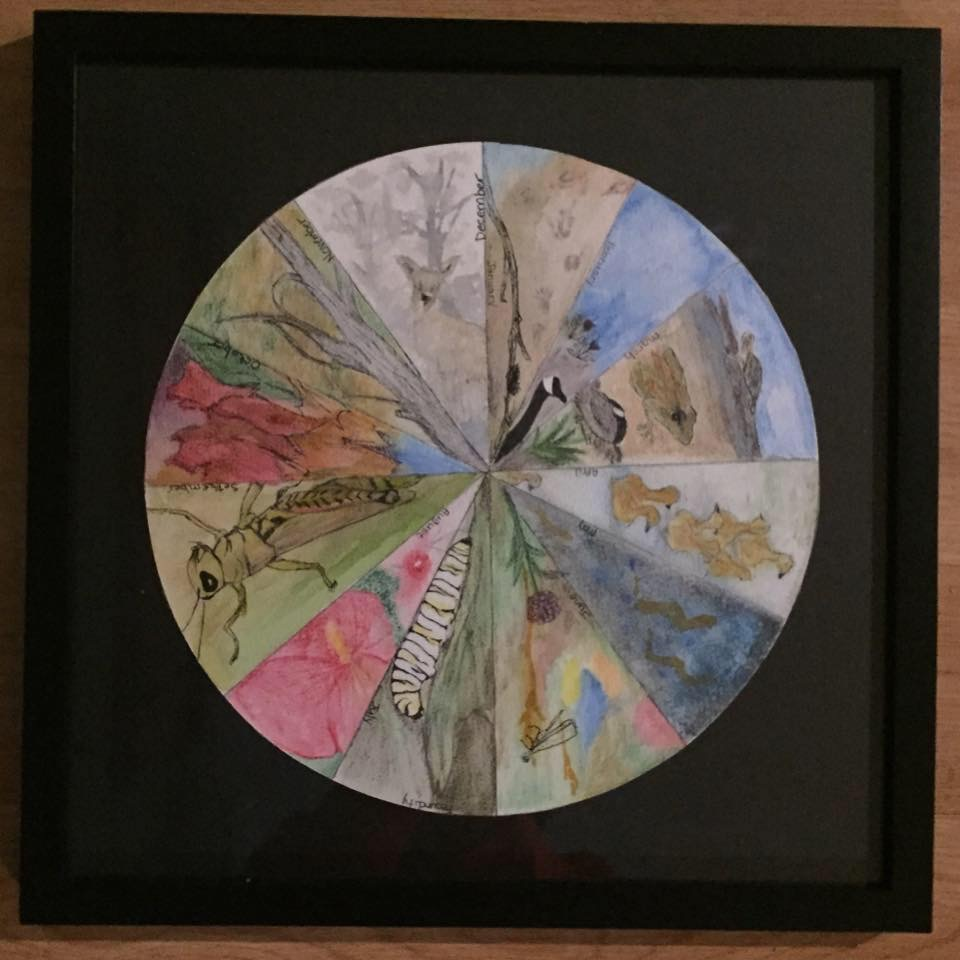 Nature Wheel Book with Susan Snyder