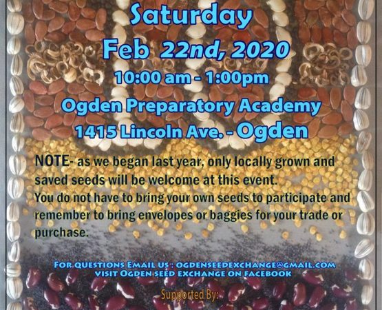 Ogden Seed Exchange 10th Anniversary Seed Swap